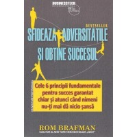 Sfideaza adversitatile si obtine succesul - Rom Brafman - Editura Business Tech