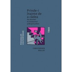 Prinde-i inainte de a cadea (Catch Them Before They Fall: The Psychoanalysis of Breakdown) - Christopher Bollas - Editura Trei