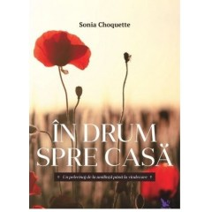 In drum spre casa