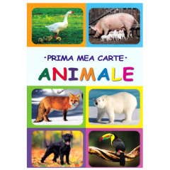 Prima mea carte. Animale - Editura Biblion
