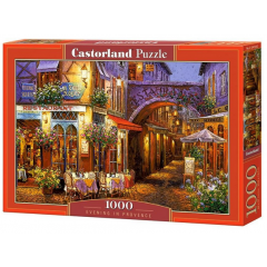 Puzzle 1000 piese Evening in Provence - Castorland
