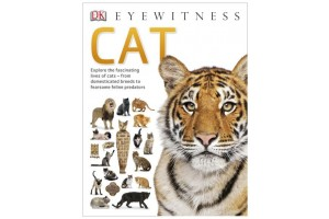 Eyewitness: Cat