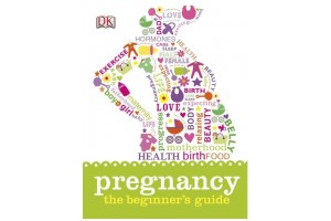 Pregnancy The Beginner's Guide
