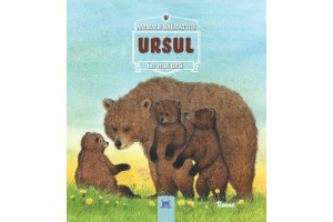 Animale salbatice in natura. Ursul - Didactica Publishing House