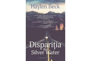 Disparitia din Silver Water