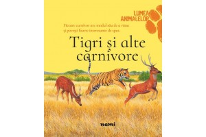 Tigri si alte carnivore / Tigers and other carnivores