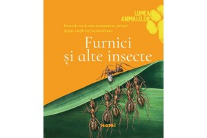 Furnici si alte insecte / Ants and Minibeasts