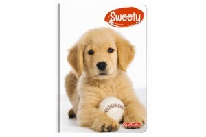 Agenda A6 Nedatata Sweety 352 File Motiv Golden Retriever 2019 / 9477090