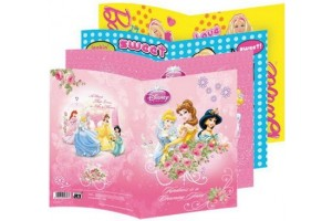 Coperti holografice Disney model baieti A4 Daco