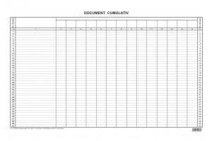 Document cumulativ A3 orizontal