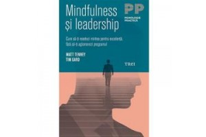 Mindfulness si leadership