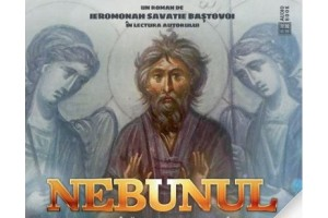 Nebunul (Audiobook)