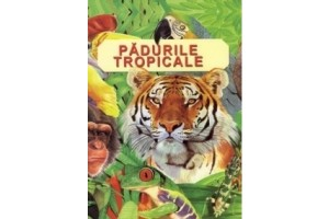 Padurile tropicale
