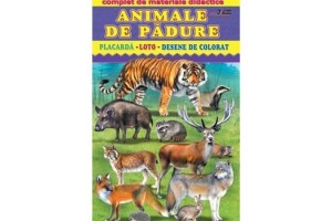 Animale de padure - Complet de materiale didactice