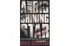 A Great Big Shining Star - Niall Griffiths - Editura Vintage