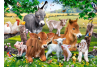 Puzzle 100 piese On The Farm - Castorland
